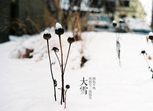 节气大雪:雪纷飞仲冬始关于大雪的这些你知道多少?