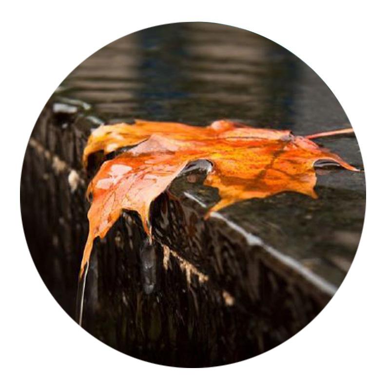 十首诗词带你看尽秋雨之美