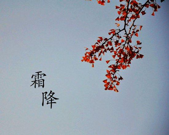 叶落秋见霜,秋将尽,冬欲来,一叶知霜降,一雨感深秋