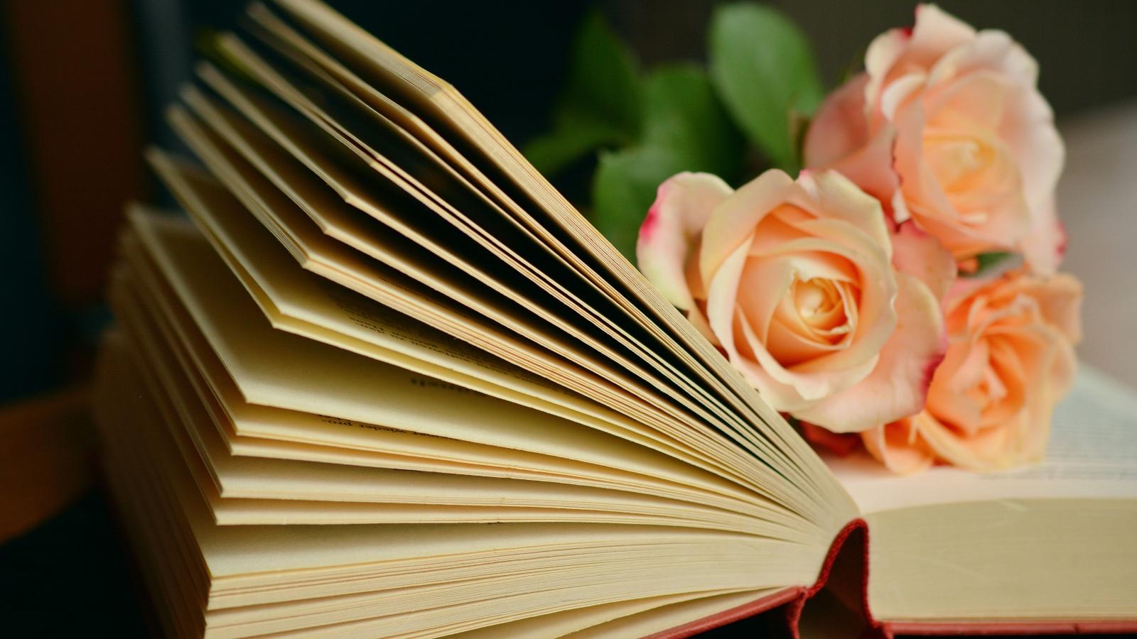 腹有诗书气自华:你读什么书,就有什么气场趣味小和尚