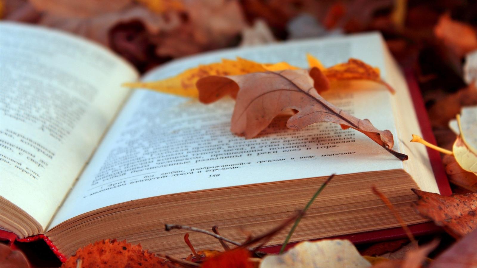 腹有诗书气自华:你读什么书,就有什么气场