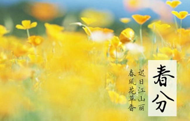 春分到,春意浓:聆听名家讲述春之物语