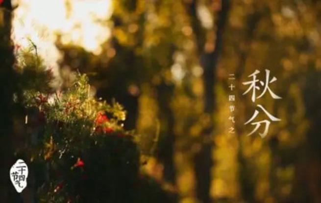秋分|团圆节前秋期半 从此昼短夜漫漫