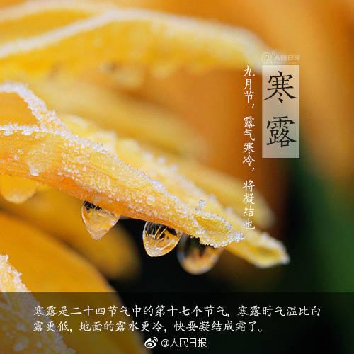 诗词中的寒露:娟娟寒露中 静看秋意渐浓