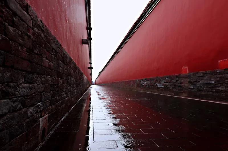 【回放】雨中的故宫博物院